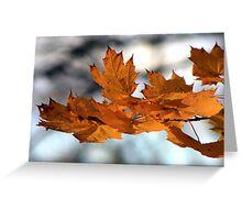 Fabulous Autumn Greeting Card