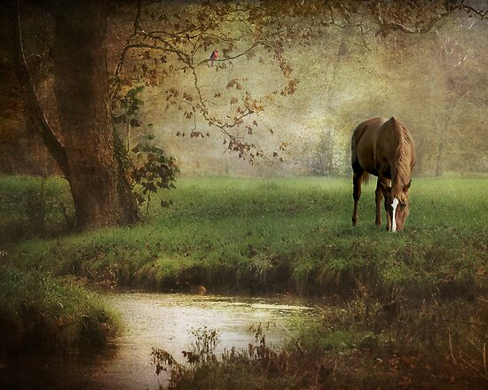 Down by the Creek by Laura Palazzolo