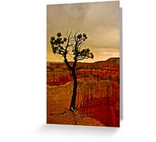 Cliffhanger - Bryce Canyon  Greeting Card