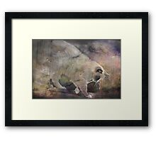 """Out of the Window & Off For a Walk !!!"" Framed Print"