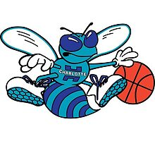 Charlotte Hornets Hugo Classic by sedrakurdi