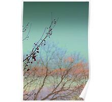 Cotten Candy Skies Poster
