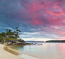 a touch of pink - balmoral beach sydney by doug riley