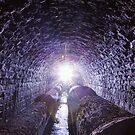 The Underground by Scott Carr