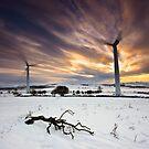 Earth, Wind & Fire by Brian Kerr