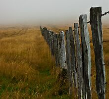Disappearing Fence Line by johngs