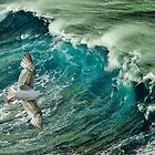 Cresting the waves by Tarrby