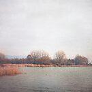 Golden morning over the lake by M a r t a P h o t o g r a p h y