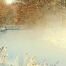 Misty by Alan Mattison