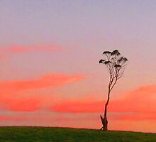Loan Tree at Sunset by Paul Campbell Psychology