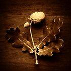 acorn & oak leaves by greg angus