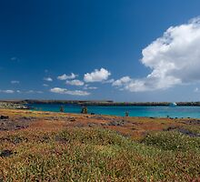 Island of Colours by MichaelJP