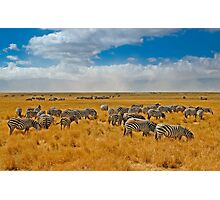 Ngorongoro Crater Photographic Print
