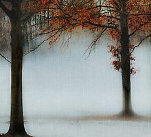 Blue Fog II by Mary Ann Reilly