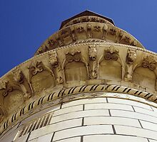 Fly over-Hawke over minaret dome, India by mypic