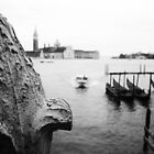 Venice by Claire Penn