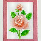 HYBRID TEA ROSE CARINELLA - AQUAREL by RainbowArt