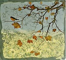 Robin In Maple Photographic Print