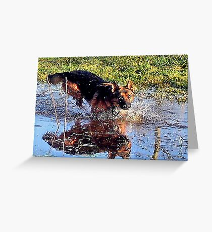 On Reflection.... Greeting Card