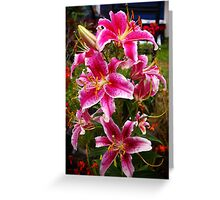 opulence... they has it! Greeting Card