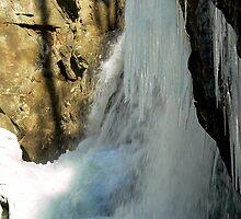 Veil of Ice by Hope Ledebur