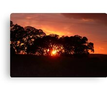Gorgeous Skies above Canvas Print