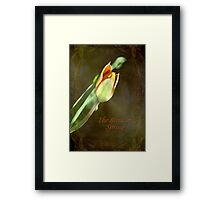 A New Spring © Framed Print