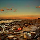 Rocks of Cambois by Derek Donnelly