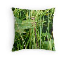 Common Green Darner Throw Pillow