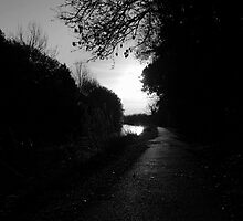 The Towpath by mikepom