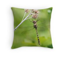Stream Cruiser Throw Pillow