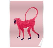 Red Monkey Poster