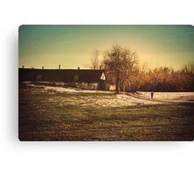 Last Winter Walk  Canvas Print