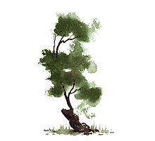 Little Zen Tree 152 Photographic Print