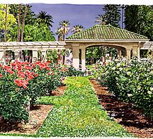 House of Roses by David Lloyd Glover