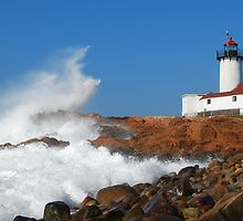 Wave Breaks on Eastern Point - Gloucester, Massachusetts by Steve Borichevsky