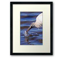 Wood Stork Fishing Framed Print