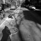 winter. brooklyn, new york by tim buckley   bodhiimages