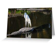 Alligator Rodeo Greeting Card