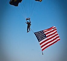 Naval Aviation Parachuting, USA   by heatherfriedman