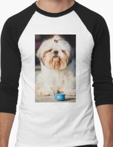 Roxy Shih-tzu  dog  Men's Baseball ¾ T-Shirt