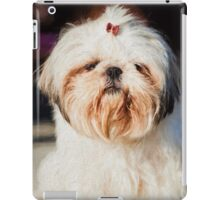 Roxy Shih-tzu  dog  iPad Case/Skin