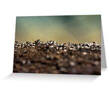 Dirt Landscape #1 Greeting Card