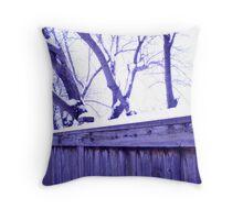 walking in winnipeg winter 2011 Throw Pillow