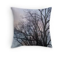 Bare Trees Against Blue Sunset - Green Lane, PA Throw Pillow
