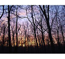 Fire in the Forest Sky Sunset - Green Lane, PA Photographic Print