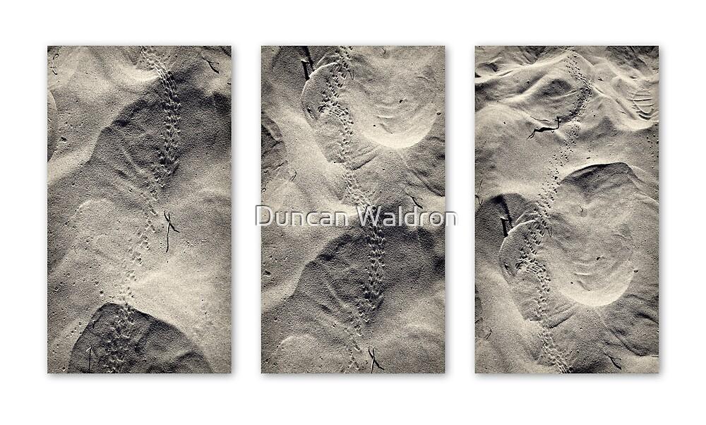 Beach trek triptych  by Duncan Waldron