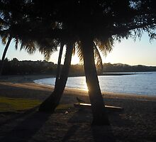 Grey Nomads picnic spot at Airlie Beach by myraj