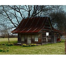 Dollhouse Cabin Photographic Print