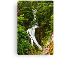 Snowdon Waterfall Canvas Print